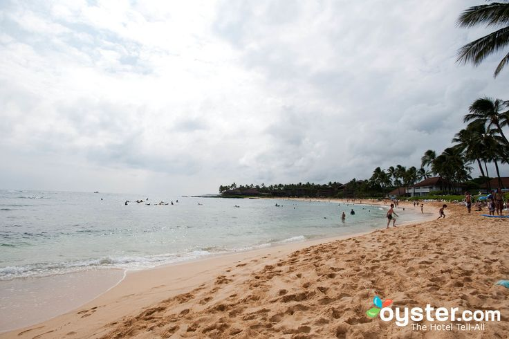 Best Beach Hotels on Kauai by Oyster.com - Of the four most popular Hawaiian islands, Kauai is the smallest and least developed, but it still wows with natural wonders.Take a look at our expert picks for the best beach hotels on Kauai and get inspired!