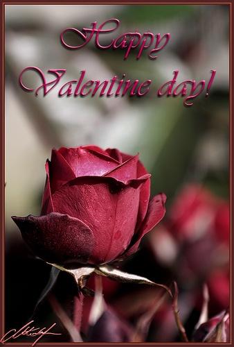 valentine's day 1989