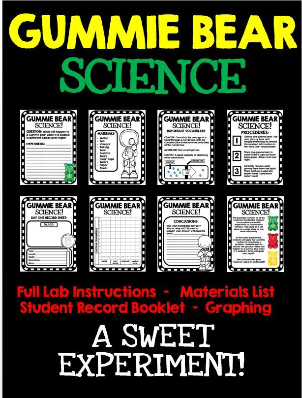 Gummie Bear Science: Students practice the Scientific Method in this fun gummie bear osmosis experiment! Full instructions, materials list, teacher tips, and student lab workbook included!