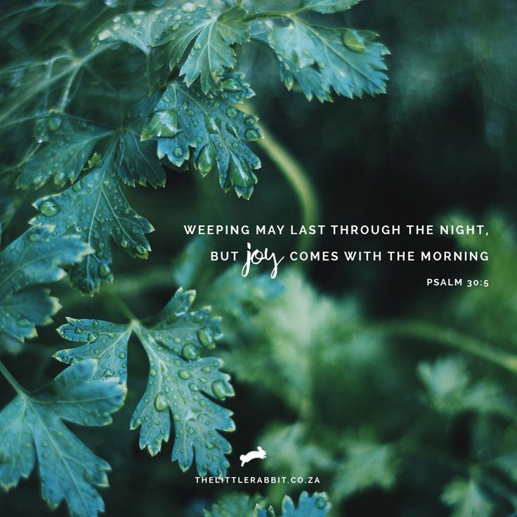 Weeping may last through the night,     but joy comes with the morning. Psalm 30:5