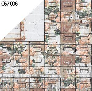 C67 006