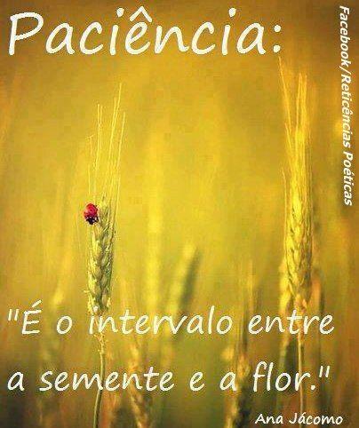 ✪sabedoria - Paciência
