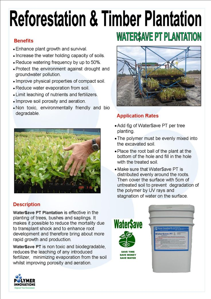 Water$ave Plantation is effective in the #revegetation & reforestation of #trees, #bushes, tube stock & #saplings. It increases #water retention in the #soil, enhances #plant #growth & more....... For more info - https://www.polymerinnovations.com.au/product/watersave/plantation/