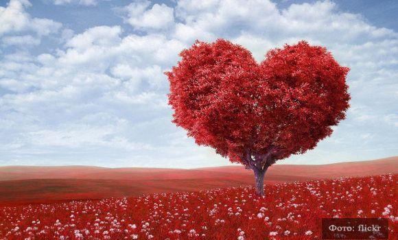 Про любовь: лучший художник сама природа (фото) | YACENKA