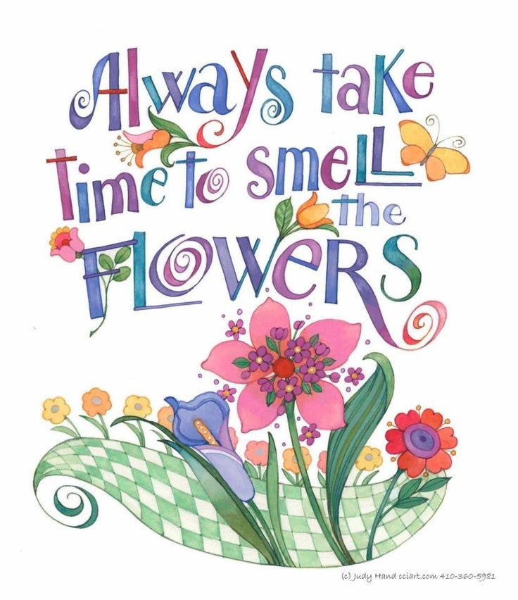 Take Time To Smell The Roses Quote: Quotes Smell The Flowers. QuotesGram