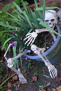 Skeleton flower pot