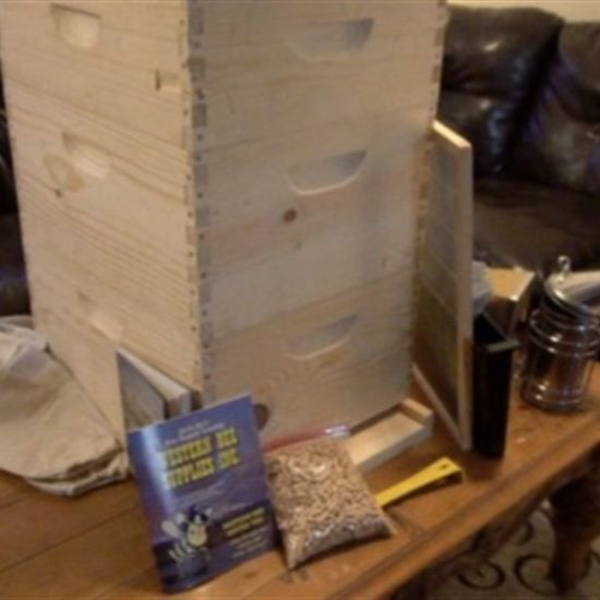 If bees are a new addition to your homestead, find a few tips for assembling your first hive kit.