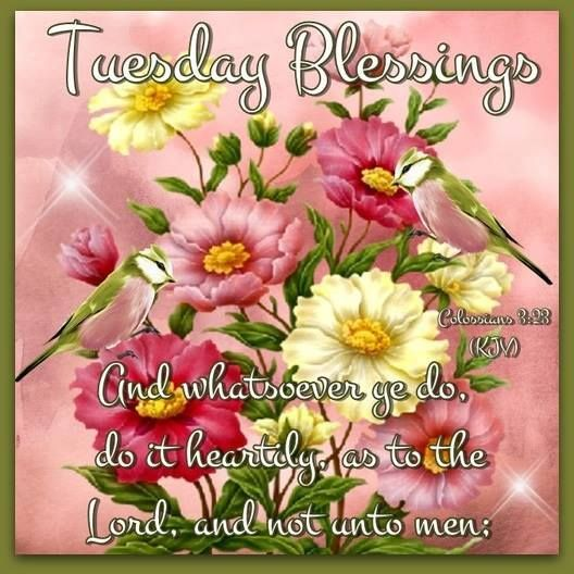 Good Morning Blessings In Spanish : Good morning have a beautiful day god bless you