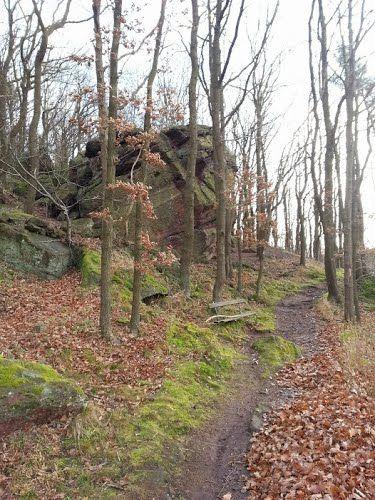 bergstein,germany | Felsen in der Mausauel bei Nideggen © Patschus ( Panoramio )