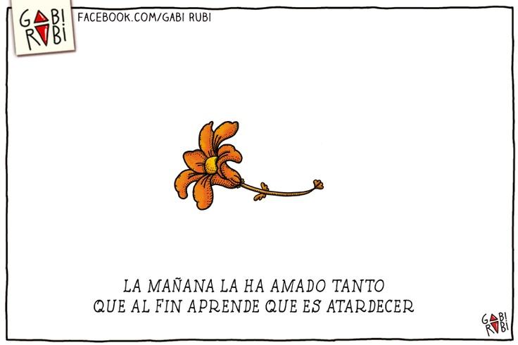 el+palacio+de+las+flores+gabi+rubi+flores+plantas+poesia+dibujada+lisandro+aristimuño+almendra+invisible+alejandra+pizarnik+dibujos++rock+nacional+sui+generis+seru+giran+(5).jpg (800×533)