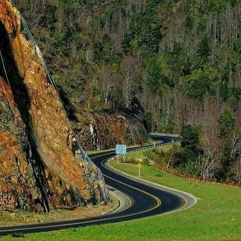 Ruta Internacional entre Panguipulli y Pto Fuy Region de los Rios. Chile