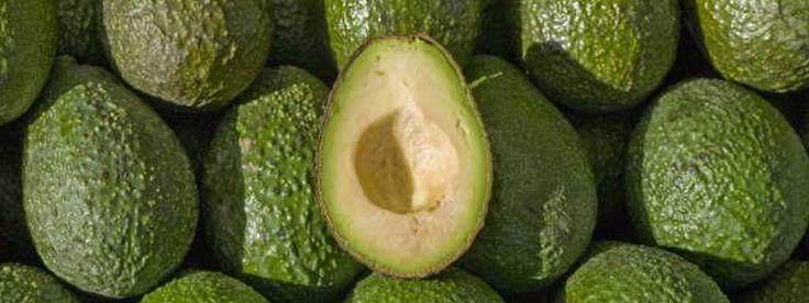 In deze blog vind je 6 hele goede redenen om vaker avocado te eten! Wie denkt dat avocado een dikmaker is, heeft het mis! Avocado's bevatten juist veel goede, gezonde vetten en bijna 20 essentiële voedingsstoffen. Avocado's zijn dus supergezond en een wondermiddel voor je huid. Als je regelmatig avocado eet, dan zal je huid je dankbaar zijn.