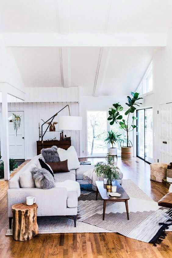 Open and bright living room with white colors and plants