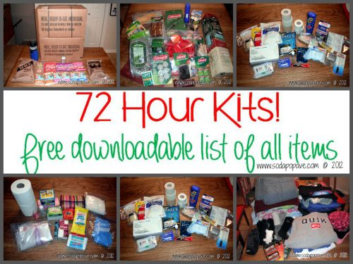 Create Your 3 Day Emergency Family Kits and Be Prepared  Homesteading  - The Homestead Survival .Com