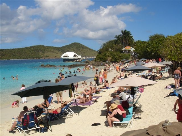 Coki Beach, St Thomas, USVI. If you think the beach is crowded, you should see all the fish in the sea! People feed them dog treats. Incredible experience! Plus the banana daiquiris are delicious.