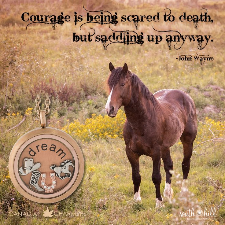 This is my new favourite quote! #conquerfear with #courage #shdcharmedlife
