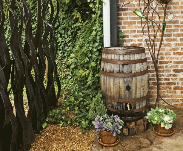 Rain Barrel...collects runoff water from the roof for the garden...