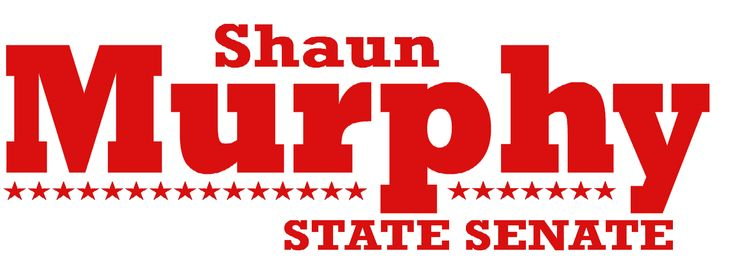 This was Shaun Murphy's Senate campaign logo for fall 2014.