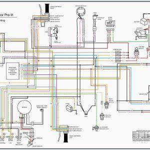 Bmw E46 318i Ecu Wiring Diagram New E36 Wire Diagram Rustic Wedding Decor Diagram Bmw E46