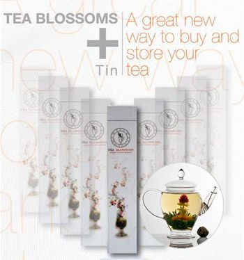 Teapot Balls (12) Floral Sampler Box (6 Varieties)