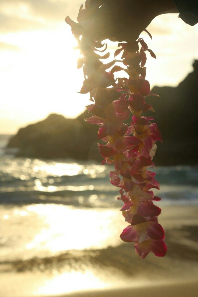 Lei near Sandy Beach Oahu, Hi