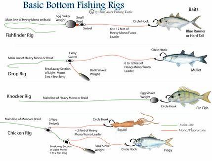 Bottom fishing fishing rigs and rigs on pinterest for Texas rig fishing