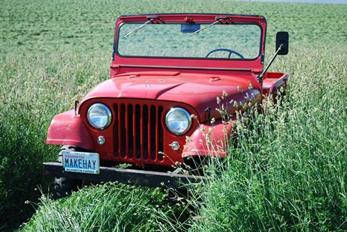 1961 Willys CJ-5 Jeep - Photo submitted by Bob Wieldraayer.