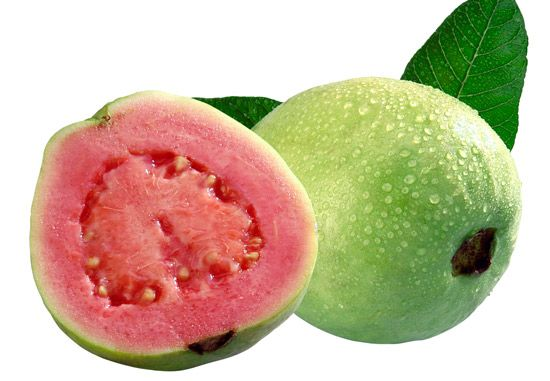Guava Fruit 8 Health Benefits and Nutrition Facts You Will Love It