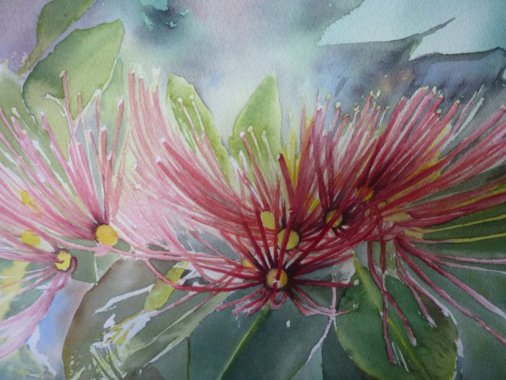 Pohutakawa - watercolour by Annette Straugheir.  www.straugheirart.co.nz