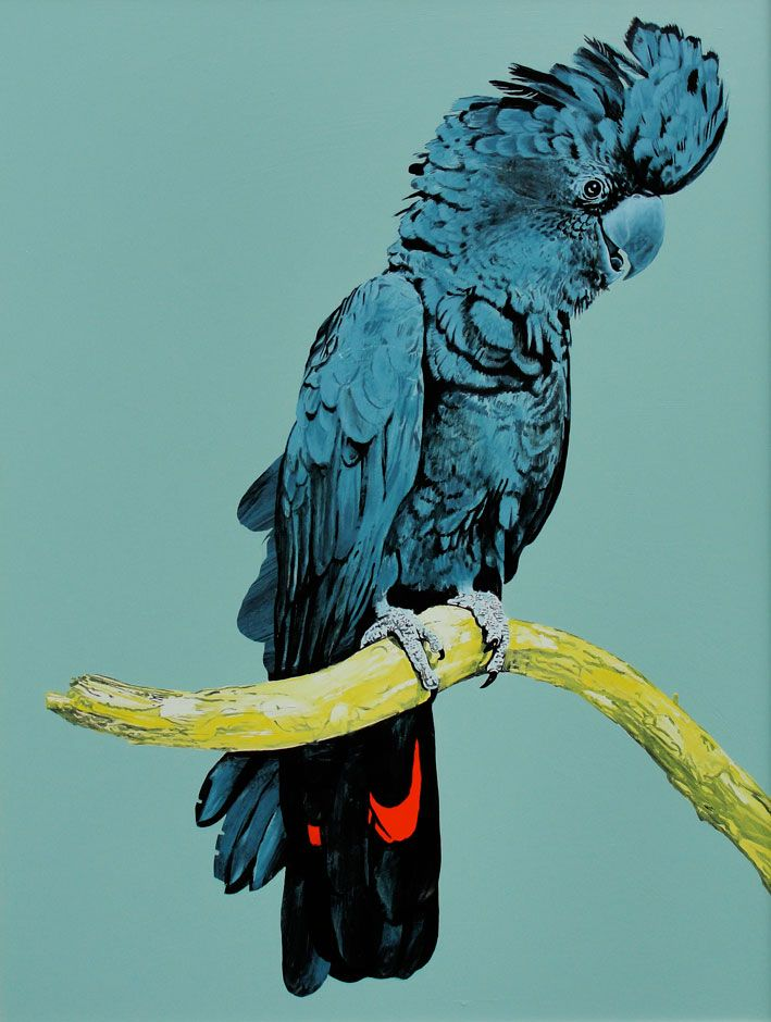 Joseph Banksii Print Martinich&Carran