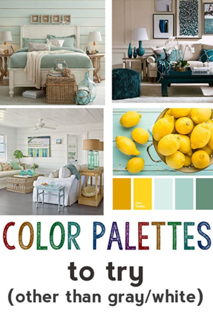 Color Palettes To Try Other Than Gray And White Brown Blue