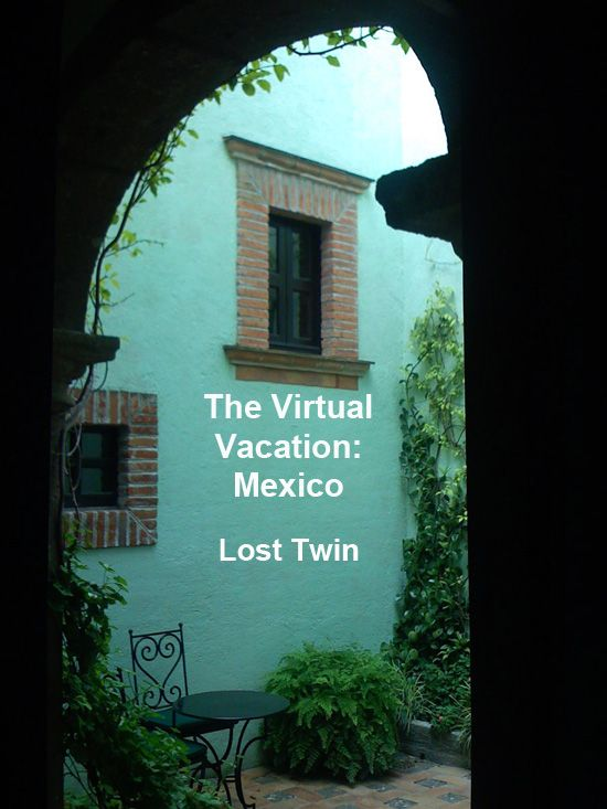 Some of you may know, from my previous writing, or from being in class with me, that I had an identical twin sister who died when I was a day old. I've grieved Vicki all my life and have always had a deep fascination with twins. Last year at the conference in San Miguel, I met a woman who's almost as good as a twin—playwright, memoirist and screenwriter Amy Ferris. The interesting thing about Amy is that we have all kinds of bizarre things in common (like we both joined a cult when...