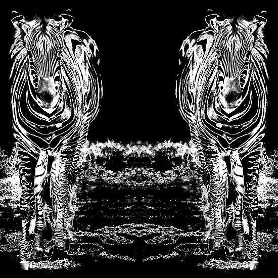 Sixteen Legs Of Zebras
