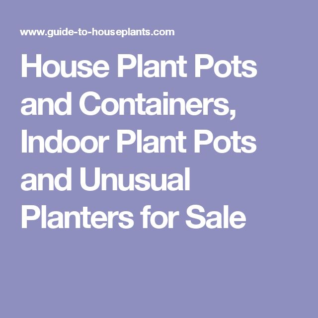 Charming Unusual Planters For Sale Part - 12: House Plant Pots And Containers, Indoor Plant Pots And Unusual Planters For  Sale