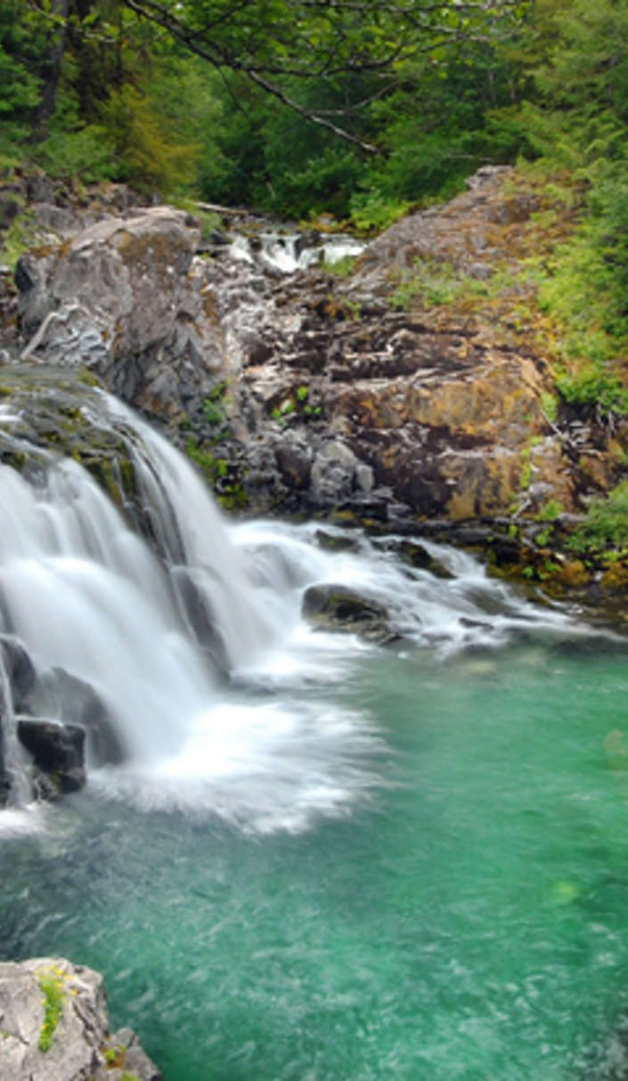 Gotta go here! Oregon's Opal Creek Wilderness is a lush hiker's paradise.