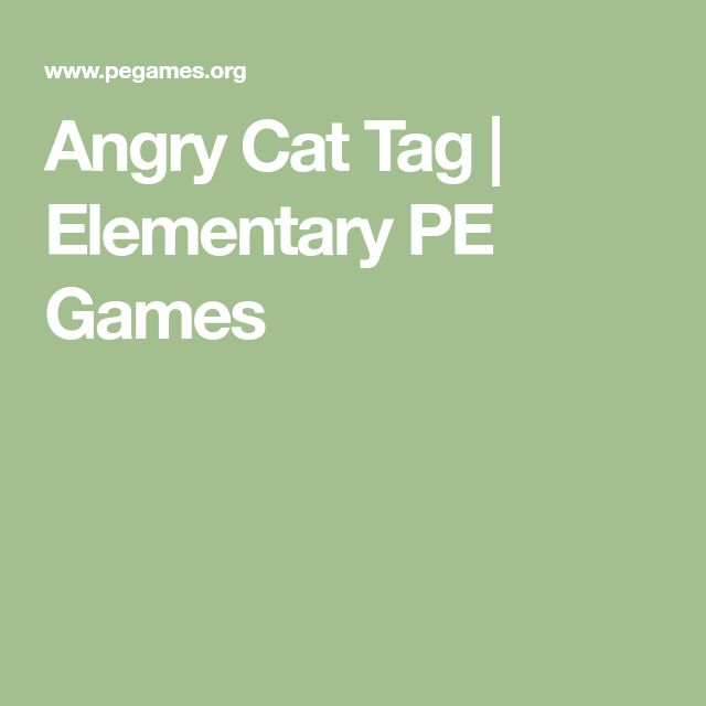 Angry Cat Tag   Elementary PE Games