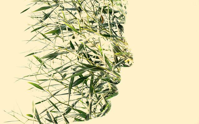 Spirit of Nature 4 by Gianluca Scolaro