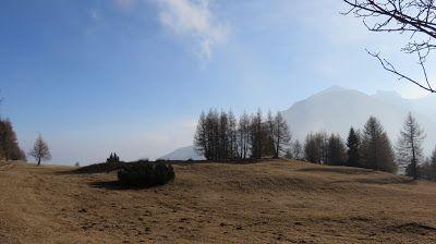 Trentatre'Trentini33人のトレント人: ボンドーネ山 ヴィオテ #Monte Bondone #viote