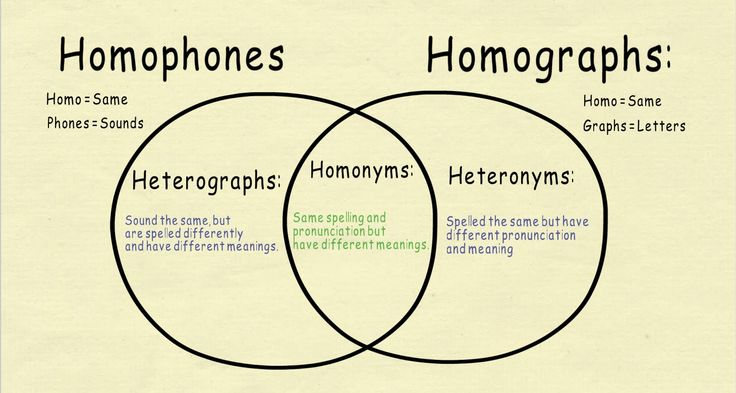 definition of homonymy Definition of homonym in the audioenglishorg dictionary meaning of homonym what does homonym mean proper usage of the word homonym information about homonym in the audioenglishorg dictionary, synonyms and antonyms.