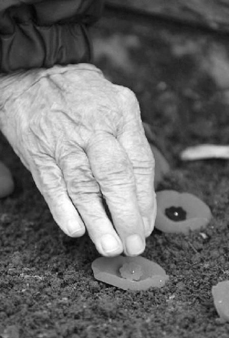 Lest We Forget: During the First World War (1914-1918), more than 600,000 Canadian soldiers volunteered to go overseas. As of November 2007, only one was still alive — John Babcock, 107, who was born on an Ontario farm and now lives in the United States. These soldiers fought in a series of costly and bloody battles and by the end of the war, more than 69,000 Canadian soldiers had died and 172,000 were wounded.