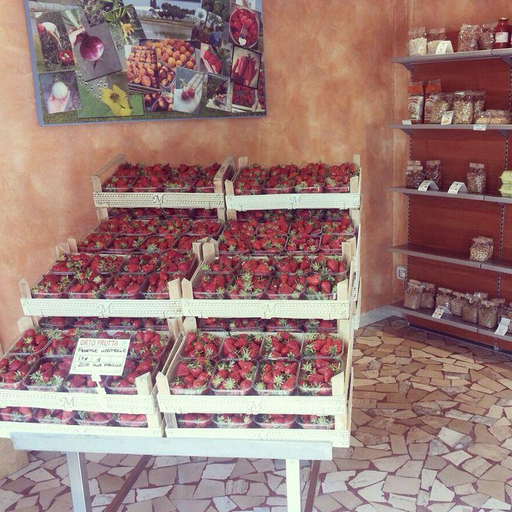 Nuova esposizione negozio fruttiamo di Savignano sul Panaro (Mo)