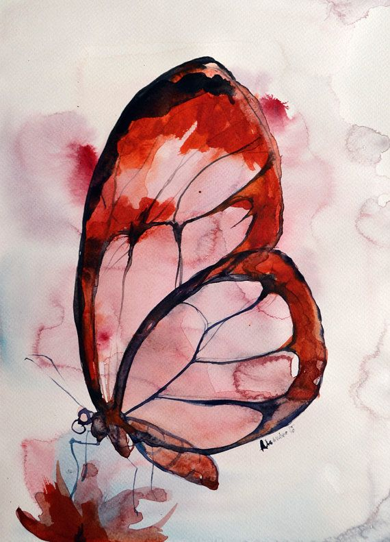 Butterfly watercolor painting original by AlisaAdamsoneArt on Etsy