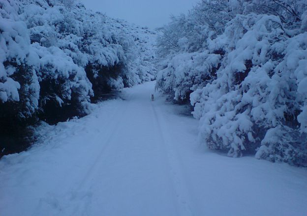Thick South African snow at Lupela Lodge in Lady Grey.