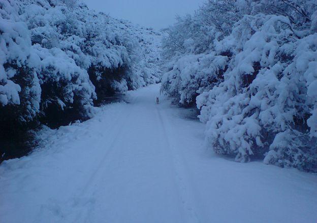 Die sneeu lê sommer dik in Lady Grey by Lupela Lodge.