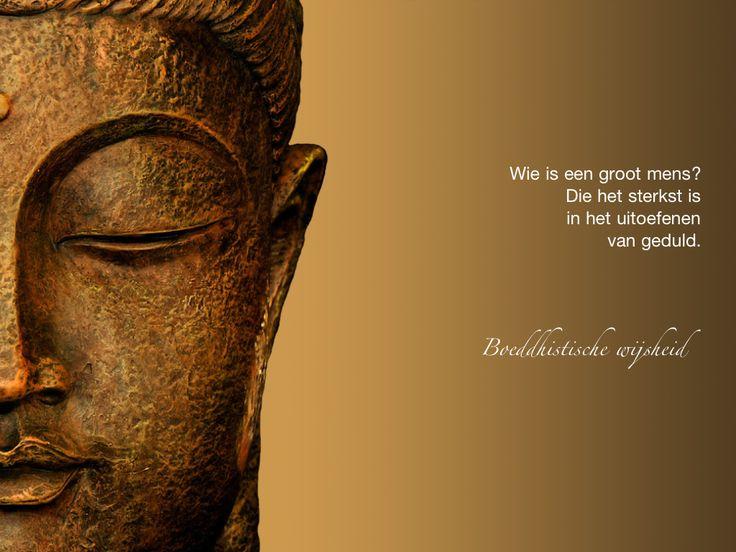 Wie is een groot mens? Die het sterkst is in het uitoefenen van geduld. / Boeddhistische wijsheid