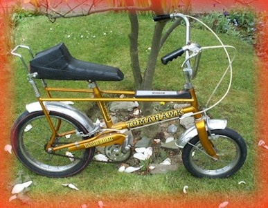 Raleigh Tomahawk. This was my first bike.