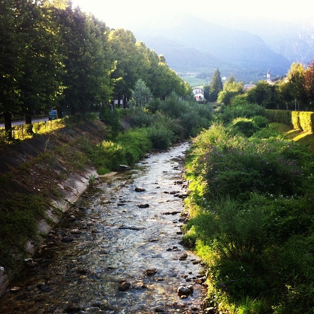 #montagna #ruscello #pedavena #feltre #verde #natura #acqua #alberi - @saars86- #webstagram