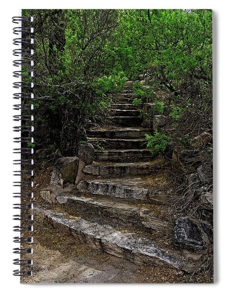 """Instep With Nature V53 Spiral Notebook for Sale by Mark Myhaver This 6"""" x 8"""" spiral notebook features the artwork """"Instep With Nature V53"""" by Mark Myhaver on the cover and includes 120 lined pages for your notes and greatest thoughts."""