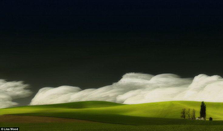 Palouse grasslands