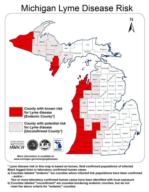 Risk Of Lyme Disease Dog Ontario